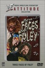WWF Three Faces of Foley
